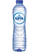 SPA REINE PET 50CL